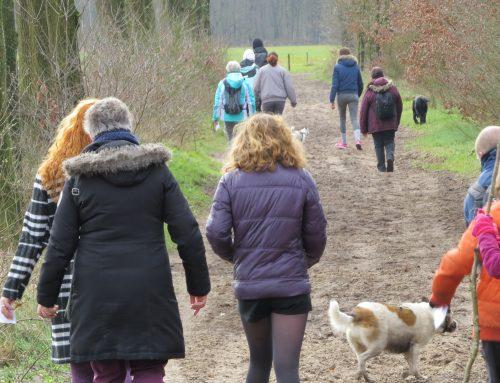 Walking Event de Maashorst 2019: vijfde editie