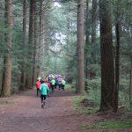 Maashorst Trailrun