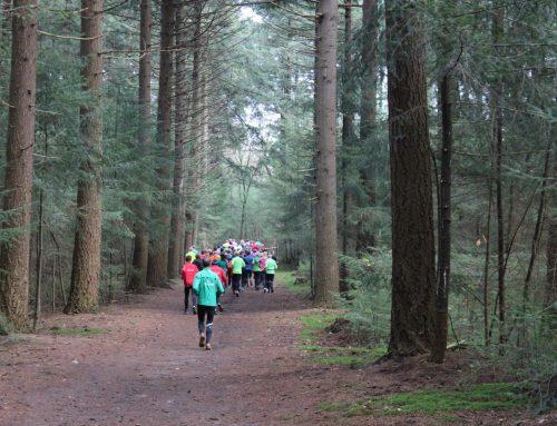 Trailrunnen is meer dan lopen